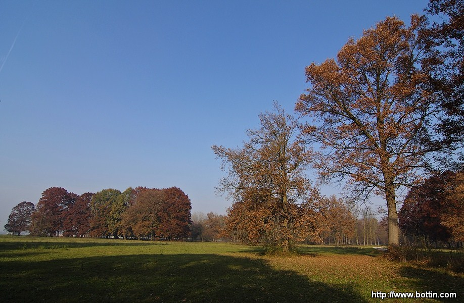 Autumn in Stupinigi Park